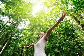 Counseling Olistico: benessere per te...