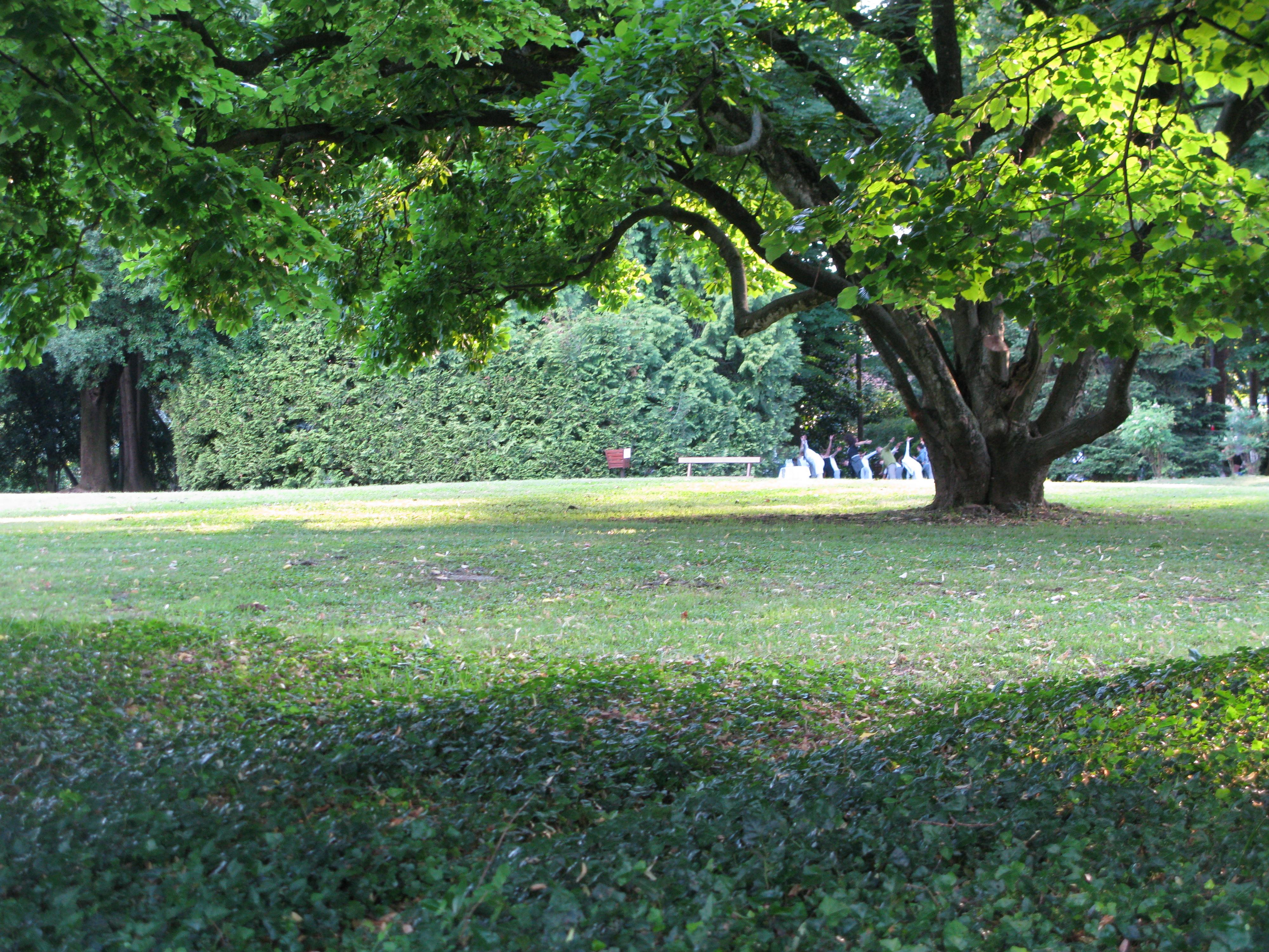 Bagno di Gong al parco Rizzani