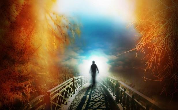 Oltre l'immortalità: il seminario