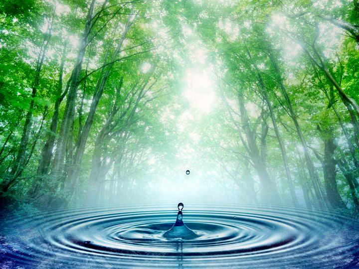 benessere naturale centro olos